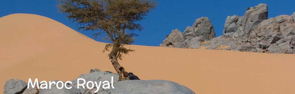 3 adventour_marocco_maroc_royal_01