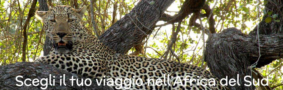 3_adventour_viaggi_sudafrica_namibia_botswana_02