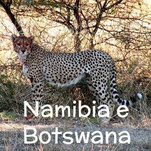 Un viaggio emozionante che sarà la gioia dei più avventurosi, appassionati di animali e di guida negli sconfinati spazi africani. Il viaggio parte dalla Namibia, attraversa il Botswana (Deserto del Kalahari, Delta dell'Okavango, Makgadikgadi Pans, Parco Chobe) e si conclude alle Cascate Vittoria.