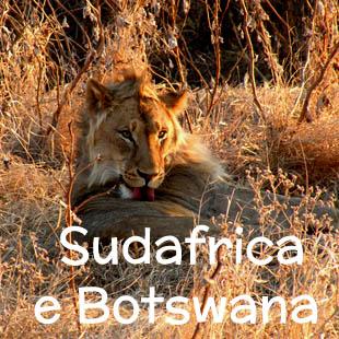 Un emozionante viaggio tutto natura che attraversa il Sudafrica nordorientale e si spinge fino all'estremo sudest del Botswana, tra grandi spazi incontaminati, baobab e animali selvaggi. Il viaggio inizia e termina a Johannesburg e passa per il Botswana (Mashatu Game Reserve), il Mapungubwe National Park e il Parco Kruger.