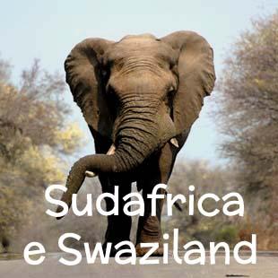 Un viaggio affascinante attraverso i grandi spazi selvaggi del Sudafrica orientale e il colorato Regno di Swaziland. Da Johannesburg a Durban, passando per  la Panorama Route, il Parco Kruger, lo Swaziland e St. Lucia.